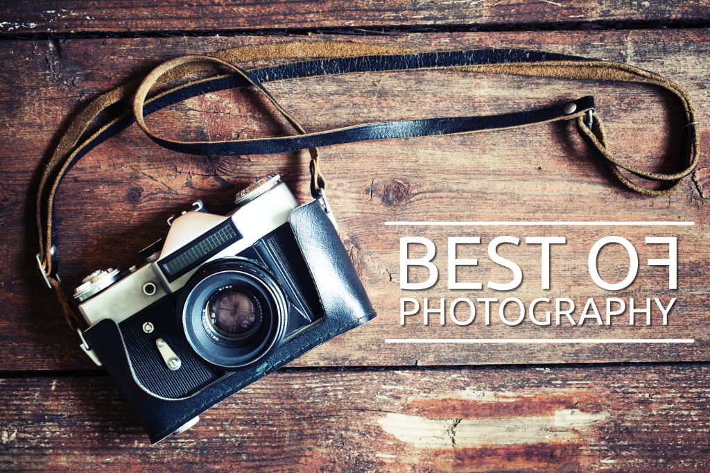 Best of Photograpy by #vivicreativo
