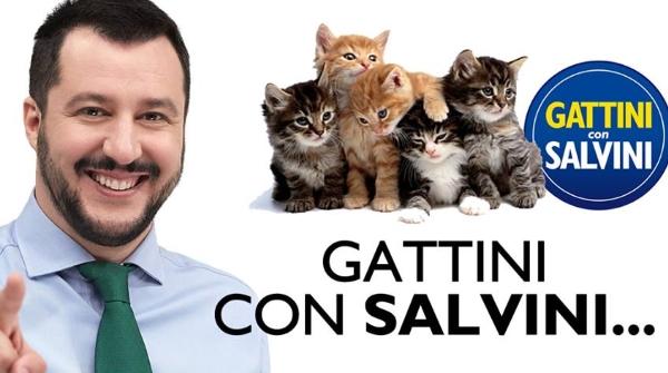 #gattinisusalvini