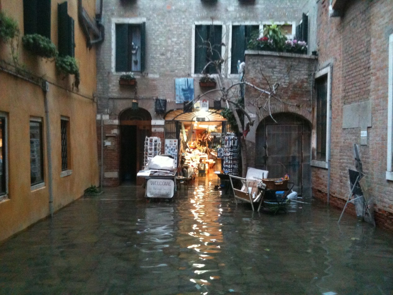 """Acqua Alta"""" di Venezia, la libreria galleggiante - ViviCreativo:"""